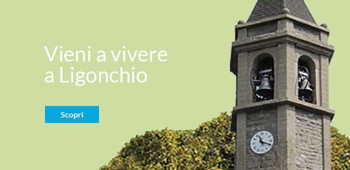 VIVERE-A-LIGONCHIO-hover